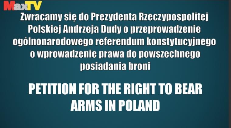 Referendum w sprawie prawa do broni